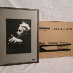 BELTEK S2300 full-range panel speakers (pair)