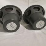 Pioneer PE-16 full-range transducers (pair)