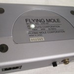 FLYING MOLE DAD-M1 monaural power amplifiers (pair)