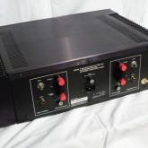 製品背面です。入力は RCA、出力は使用するスピーカーによって接続位置を変えます。(製品コメント参照)