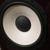 オリジナル L101 に習い 14inch(35cm) WFを採用しています。