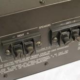 バインディングポストは端子台に近い形状です。裸線か幅10mmまでのY-lug をご利用ください。